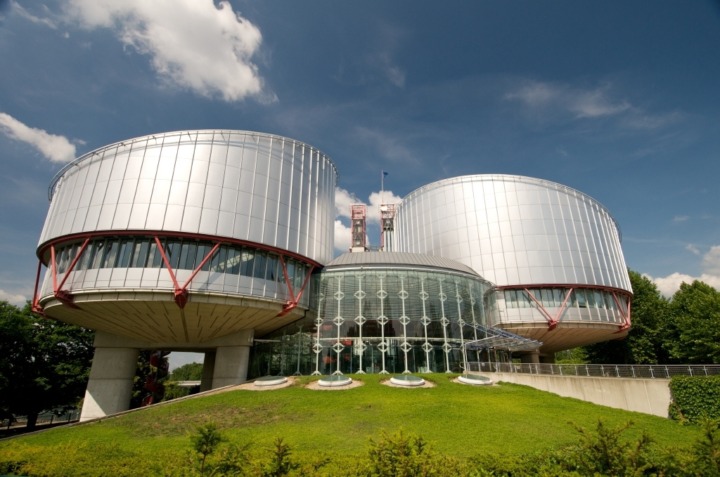 The European Court decided to strike the application out of its list of cases